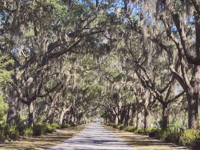 Savannah-Travel-Itinerary