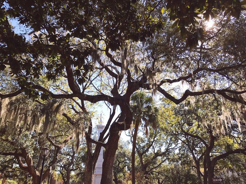 Savannah-Travel-Itinerary